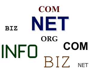 web domain registration details